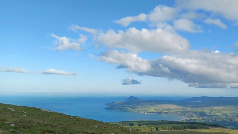 Scoția mare albastră turcoaz