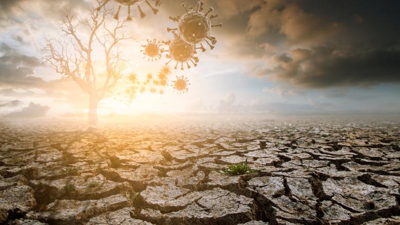 ilustratie dezastru climatic