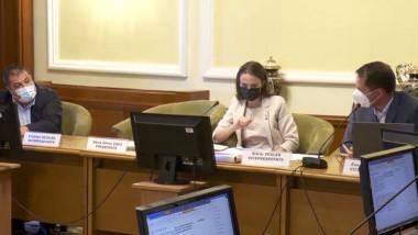 discutii in comisia munca parlament