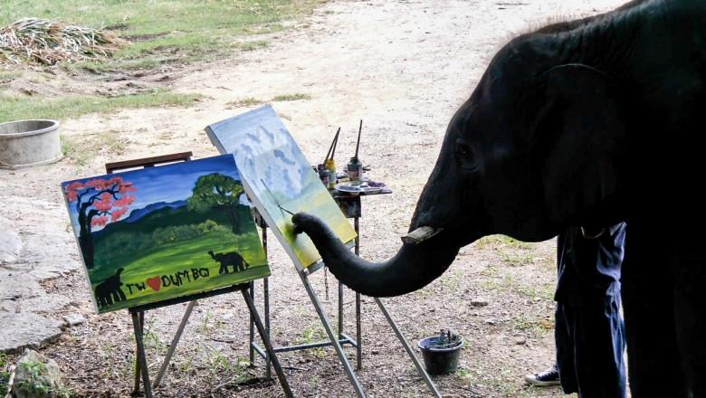 Un elefant pictează tablouri care se vând cu sute de lire sterline.
