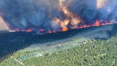incendii canada profimedia-0618862924
