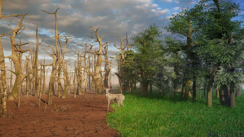 ilustratie pentru apocalipsa climatica