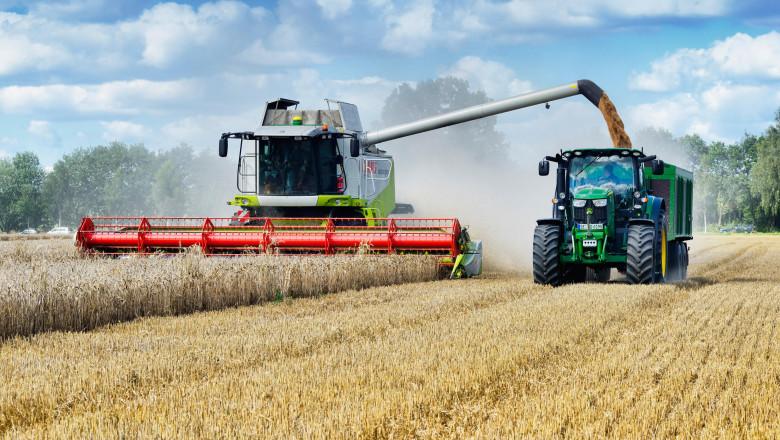 combină recoltează grâu.