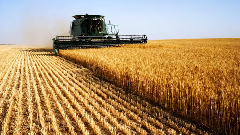 Crește prețul pâinii în Rusia. Producătorii sunt nemulțumiți de majorarea costurilor de producție și transport
