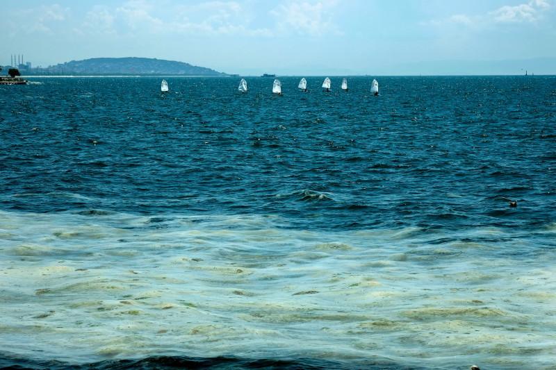 Marine mucilage in Marmara Sea