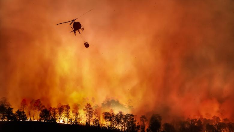 incendii de vegetație