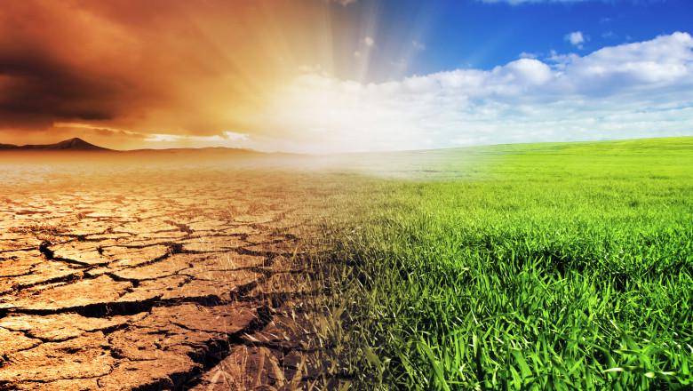 imagine sugestivă cu deșert și iarbă, care sugerează efectul schimbărilor climatice