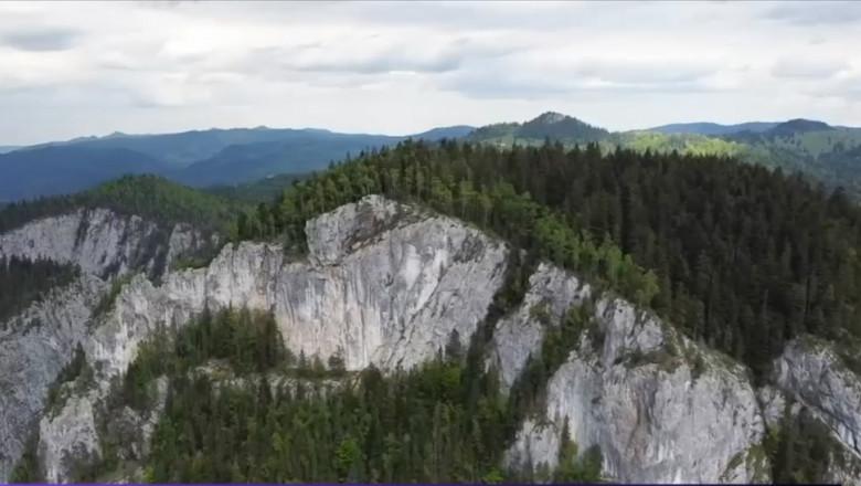 peisaj de munte cu stanci si paduri