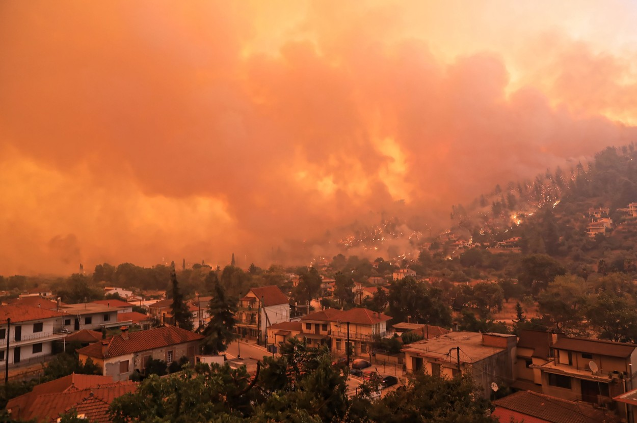 Forest fires in Greece - 08 Aug 2021