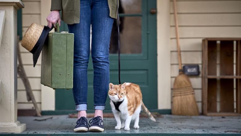 femeie cu o valiza mica si o palarie de paie in mana in fata unei usi cu o pisica alaturi