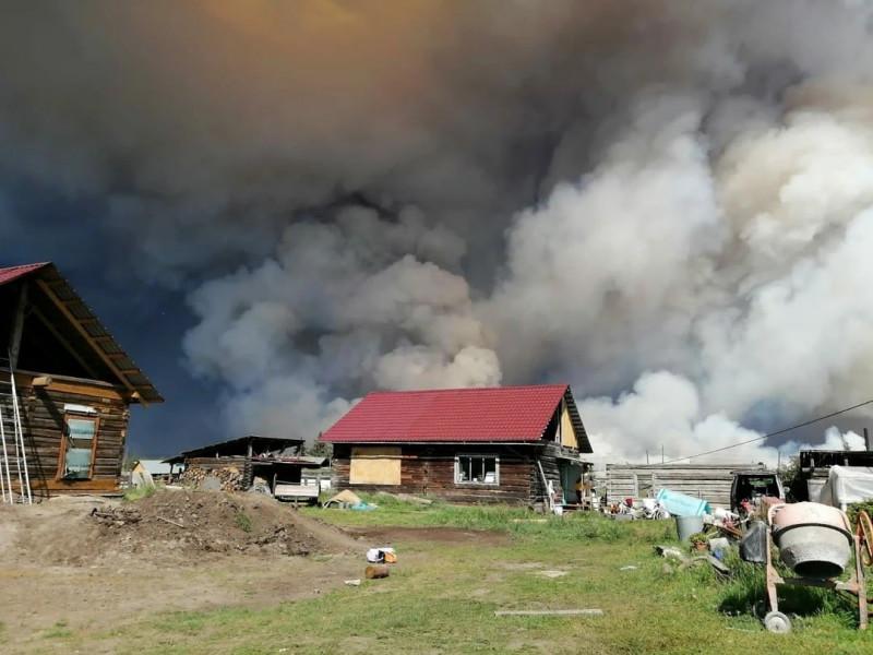 incendii-padure-siberia