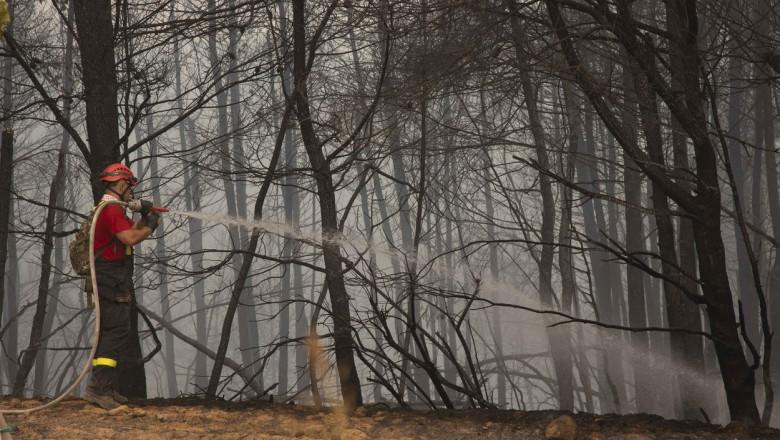 pompieri cu pompă de apă printre copaci arși în Grecia, în timpul incendiilor din iulie și august 2021.