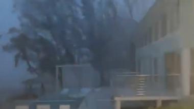 copaci batuti de vant puternic in cancun in itmpul uraganului grace