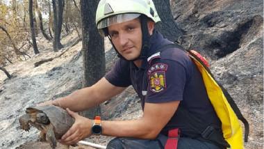 Pompier român cu o broasca testoasa in maini în incendiile din Grecia.