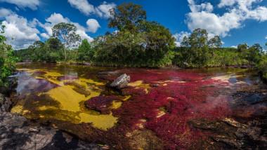 Cano Cristale, râul în cinci culori din Columbia.