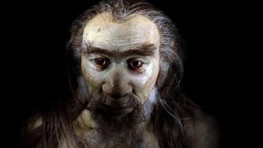 homo sapiens reconstituire
