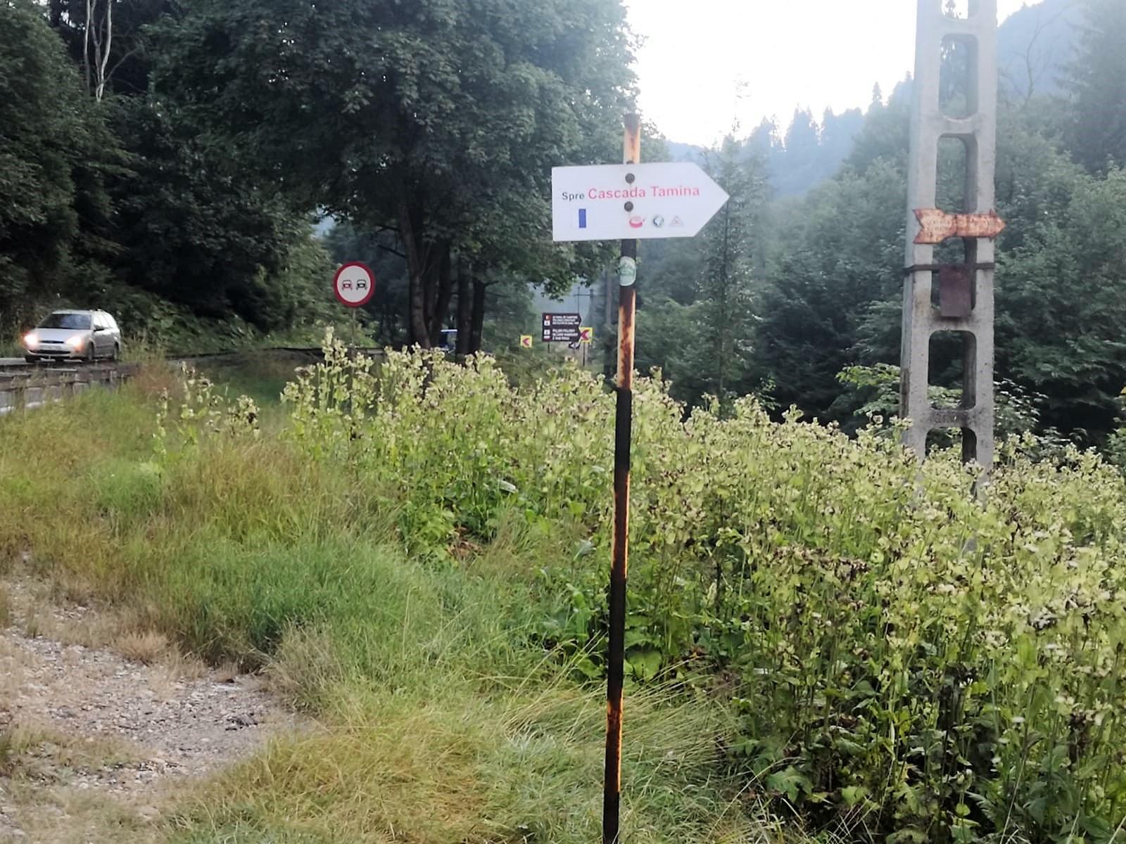 drum-forestier-cascada-tamina-fb-romsilva23