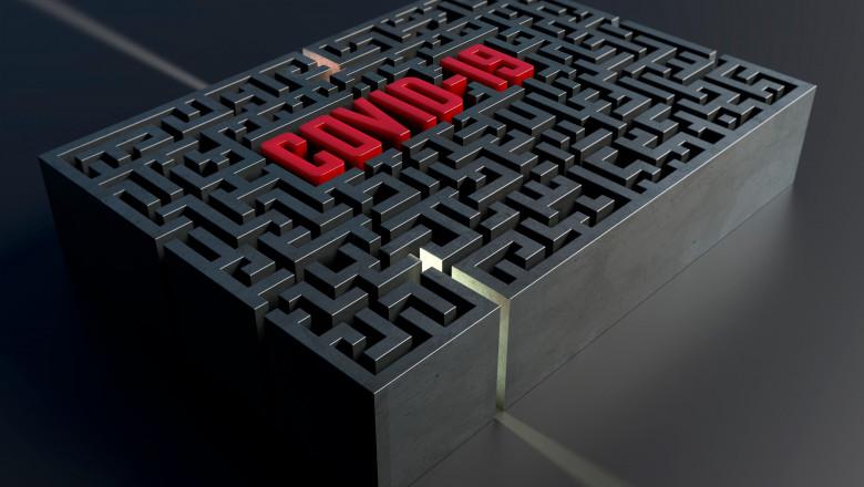 labirint covid-19