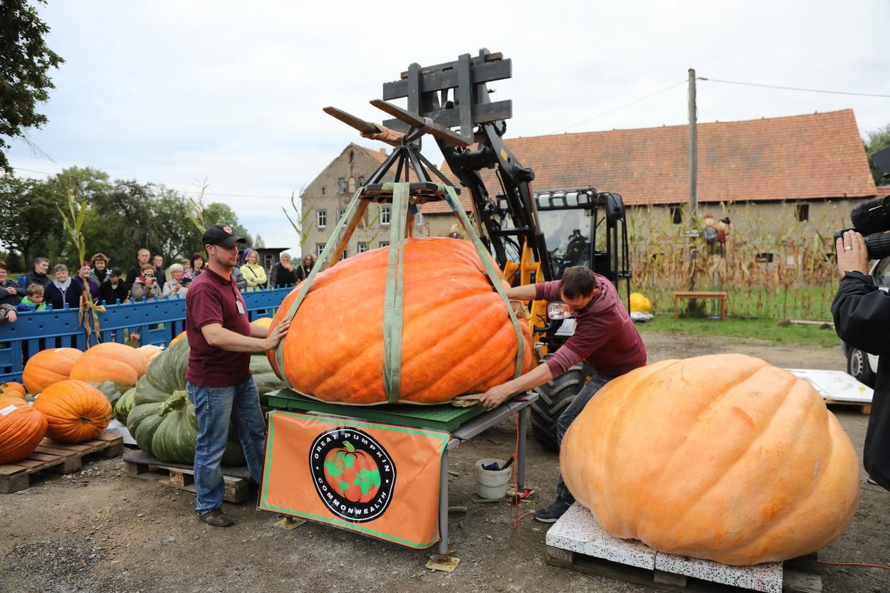 13th Open Saxon Pumpkin Weighing Championship, Ludwigsdorf, Germany - 19 Sep 2021