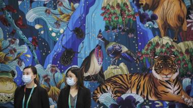 două tinere la cop 15 și un afiș desenat cu mai multe animale, reprezentând biodiversitatea