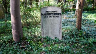 mormntul lui Max Friedlaender