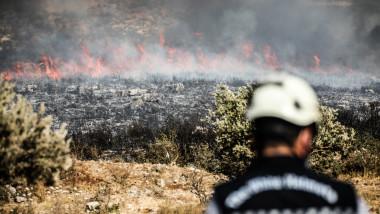 un pompier se uita in directia unor flacarei care au cuprins vegetatia