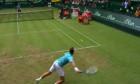 tenis troicki