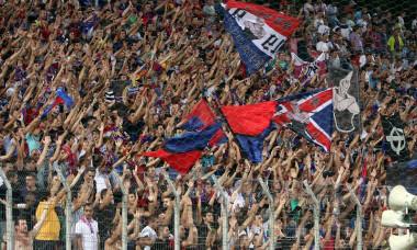 Steaua Dinamo fani