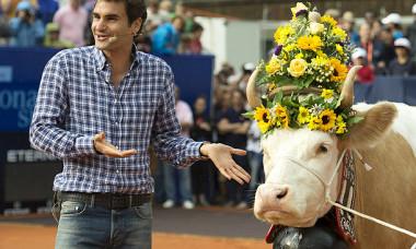 Federer vaca
