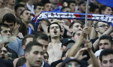 Steaua fani