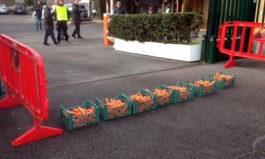 morcovi protest roma