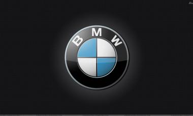 Bmw logo-2