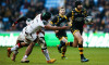 wasps toulouse