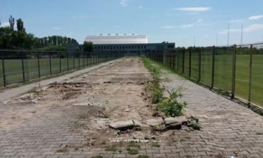 teren Steaua