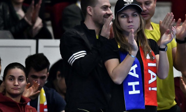 halep fed cup