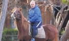 sumudica pe cal