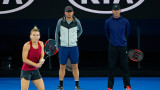 halep cahill andrei pavel