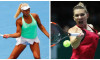 collage halep