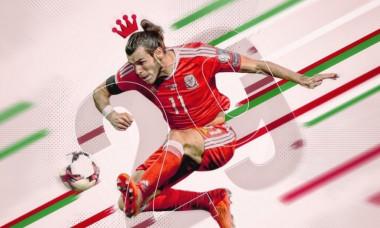 Bale 29
