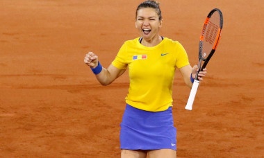 TENIS: SIMONA HALEP VS PATTY SCHNYDER, FED CUP ROMANIA - ELVETIA