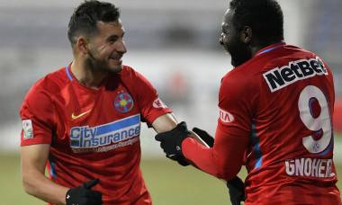 FOTBAL:FC BOTOSANI-FCSB, LIGA 1 BETANO (16.12.2018)
