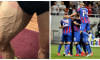 collage fcsb