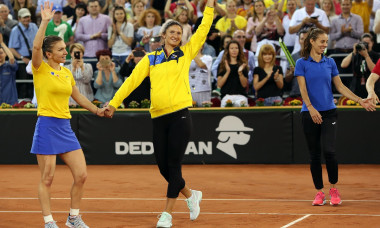 TENIS: SIMONA HALEP VS PATTY SCHNYDER, FED CUP ROMANIA - ELVETIA
