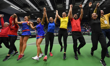 fed cup bucurie