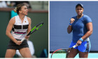 collage halep townsend