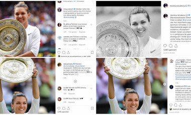 collage fed cup