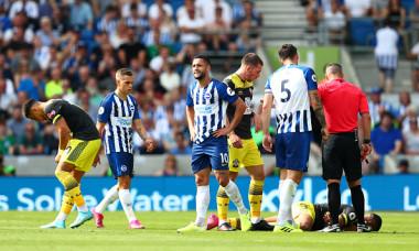 Brighton & Hove Albion v Southampton FC - Premier League