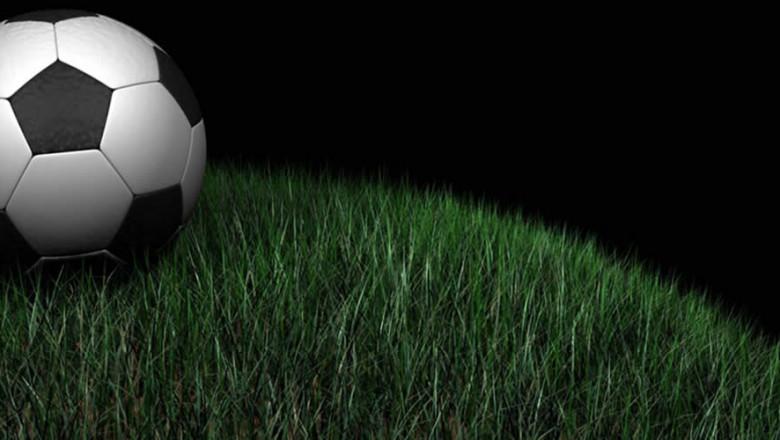 soccer 20ball 20in 20grass-45856