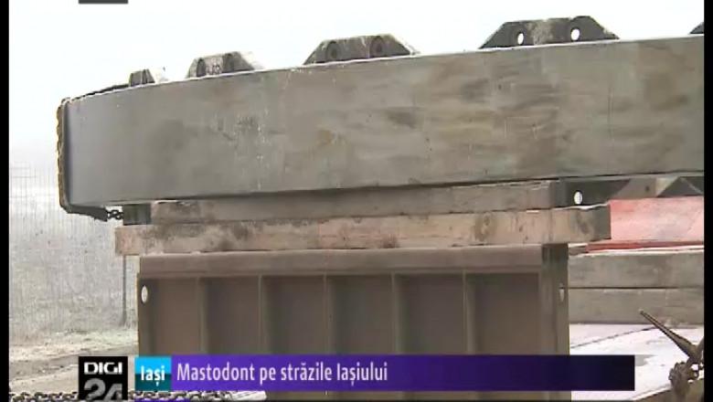 mastodont 20pe 20strazile 20iasiului 20digi24 20iasi-50766