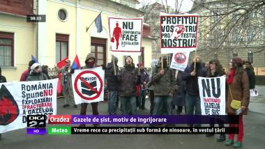 stire 20protest 20sist-48823